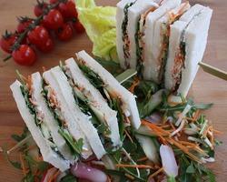 Le carré frais végétarien